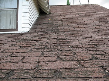 Asphalt Shingles as one of the best roofing options
