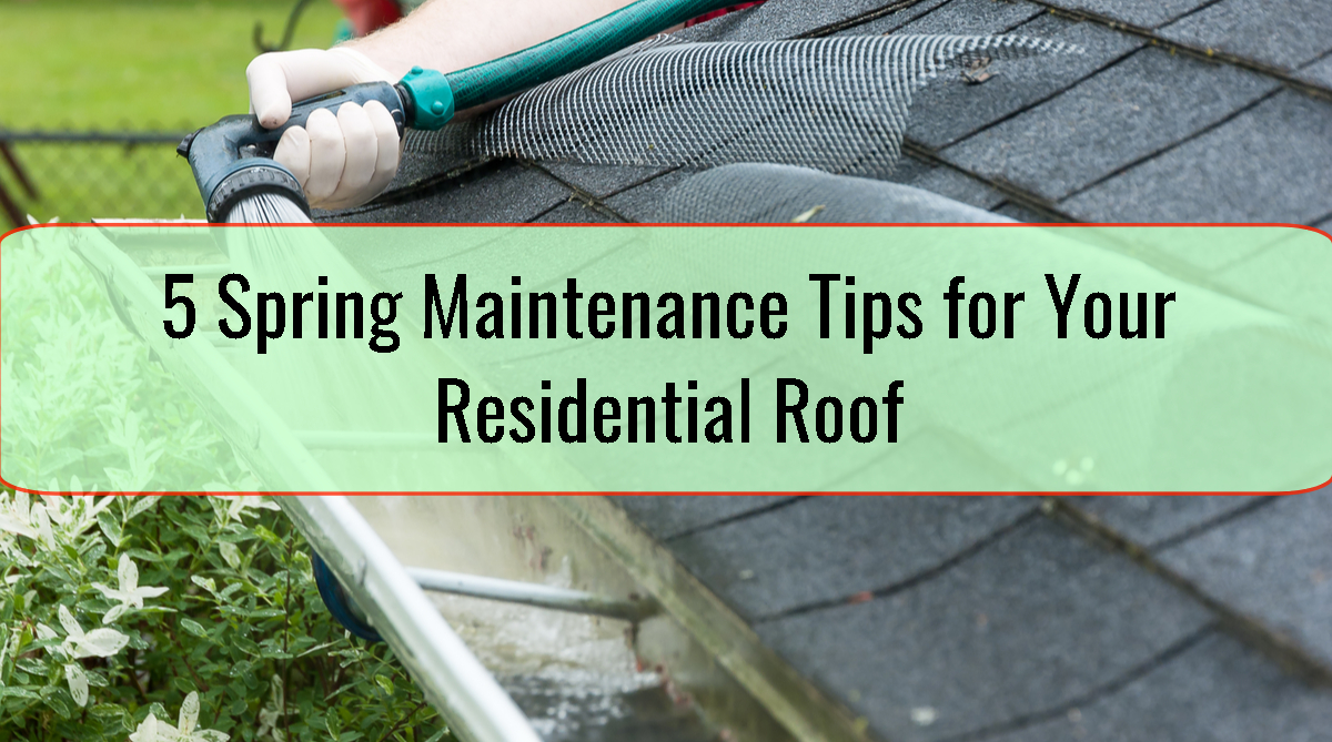 5 Spring Maintenance Tips for Your Residential Roof